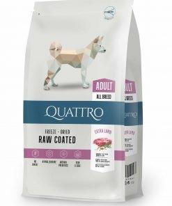 hrana uscata caini Quattro Adult miel All Breed extra Lamb cu crane de miel