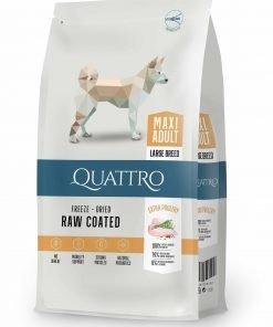 hrana uscata caini quattro maxi adult premium pentru cain adulti de talie mare cu pui