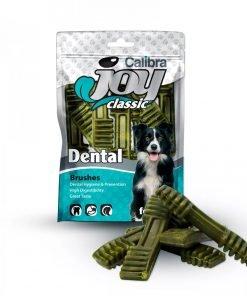 calibra joy dental